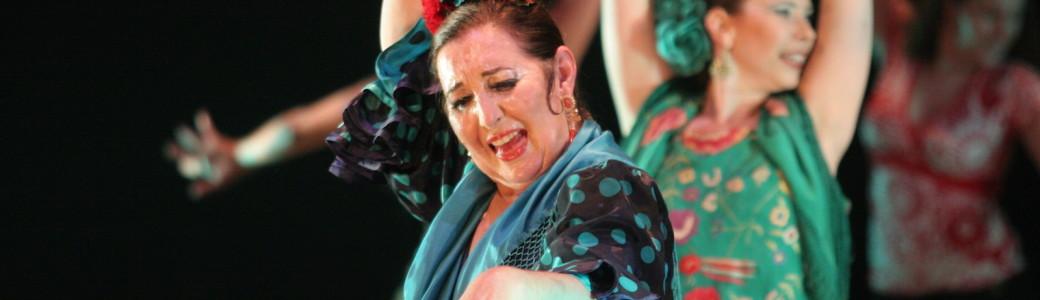 silvia y cia 2007 narnia flamenco piccola